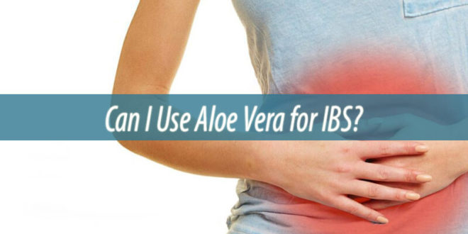 Can I Use Aloe Vera for IBS
