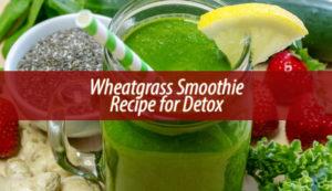Wheatgrass Smoothie Recipe for Detox